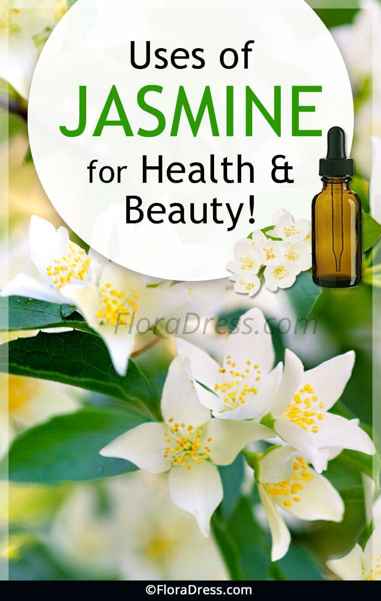 Benefits of jasmine for health and beauty floradress uses of jasmine for health and beauty izmirmasajfo
